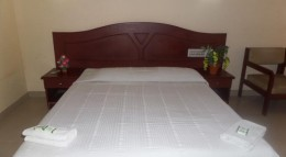Last Hour Deal Deluxe Double Room with Fan